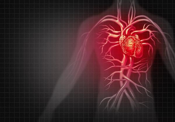 cardiovascular disease testosterone