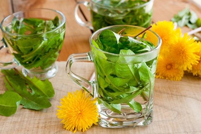bigstock-Dandelion-Tea-Hot-Water-Pour-214729615