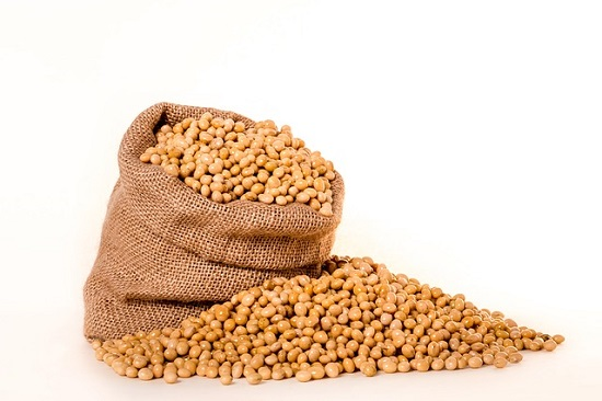 soybeans-2039642_640-1